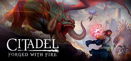 Citadel: Forged with Fire cd steam key günstig